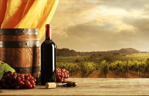 山東紅酒連鎖代理加盟
